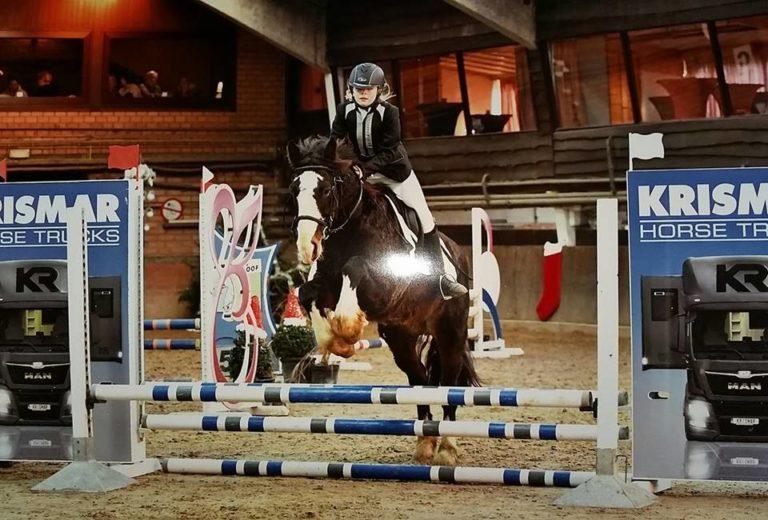 foto paard